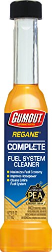Gumout 510014 Regane Complete Fuel System Cleaner