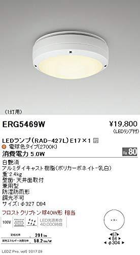 ENDO LEDアウトドアシーリングライト 電球色2700K フロストクリプトン球40W形相当 防湿防雨形 白 ERG5469W(ランプ付) B07HQDM1RZ