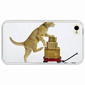iPhone 4 4S Black Hardshell Case kitten boxes playful Transparent Desin Images Protector Back Cover