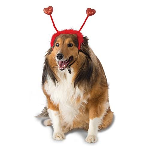 Rubie's St. Patrick's Day Bopper Dog Costume, Red Heart Bopper - Medium / Large