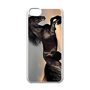 linJUN FENGProtection Cover Hard Case Of Horse Cell phone Case For ipod touch 5