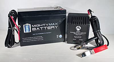 12V 10AH Replacement Battery for Lawn Mower + 12V 1Amp Charger - Mighty Max Battery brand product