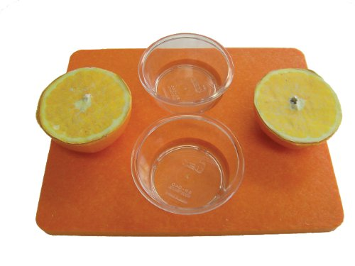 Birds Choice Jelly/Fruit Open Platform Feeder