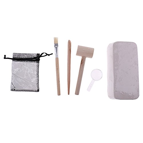 Fenteer Plaster Mineral Ore Excavation Discovery Geology Toys for Cildren Preshool Learning Toys by Fenteer