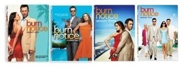 Burn Notice: Seasons 1-4 by Bruce Campbell -  DVD, Bruce Campbell.Gabrielle Anwar