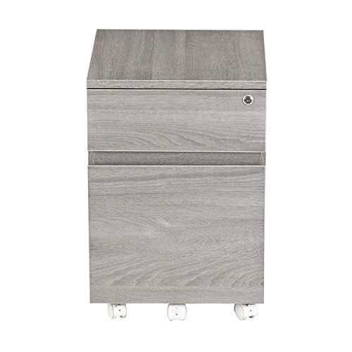 Techni Mobili Rolling 2 Drawer Vertical Filing Cabinet with Lock and Storage, Grey