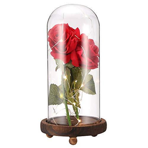 Vangonee - Juego de luces LED de rosa con petalos caidos en cupula de cristal sobre base de madera para decoracion del hogar, fiesta de vacaciones, aniversario de boda