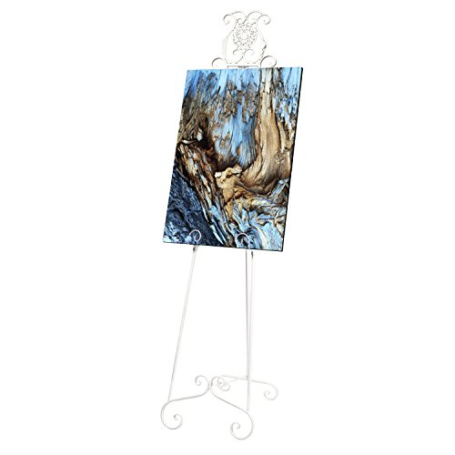 SOURCEONE.ORG Source One Deluxe Large Metal Display Easel 70 Inches Tall, White, Brown & Black Available (White)