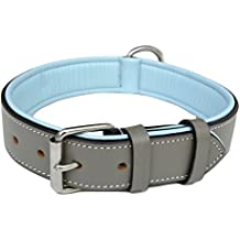 Soft Touch Collars Padded Leather Dog Collar, Gray and Blue Large, Handmade With Genuine Real Full Grain Leather