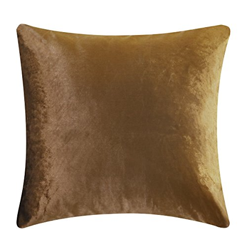 GIGIZAZA Brown Chocolate Velvet Decorative Throw Pillow Cushion Covers 18inch Pillow Cases for Sofa Bed (Chocolate, 18x18inch(45x45cm))