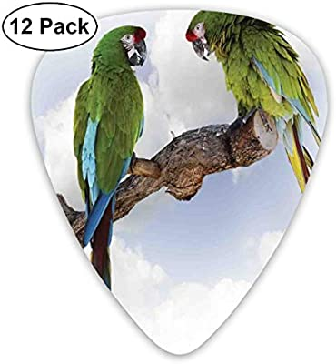 Guitar Picks - Abstract Art Colorful Designs,Two Parrot Macaw On A Branch Talking Birds Clever Creatures Of The Nature,Unique Guitar Gift,For Bass Electric & Acoustic Guitars-12 Pack: Amazon.es: Instrumentos musicales