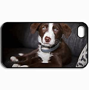 Customized Cellphone Case Back Cover For iPhone 4 4S, Protective Hardshell Case Personalized Dog Look One Dog Black