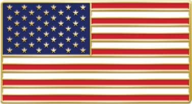 Michigan State Lapel Pin MI US Flag American USA Patriot Politics