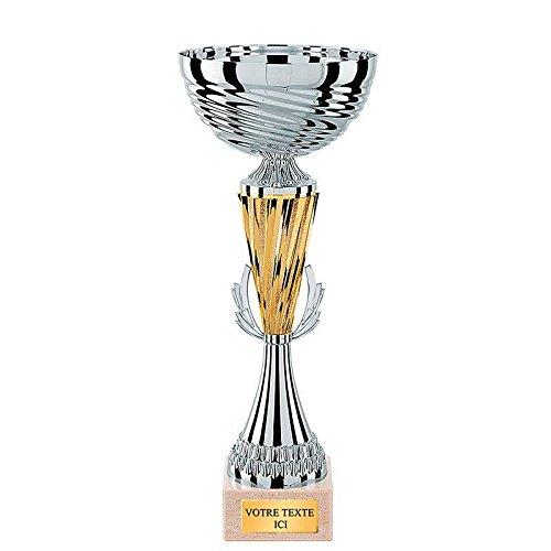 Coupe argent Trophée Sportif