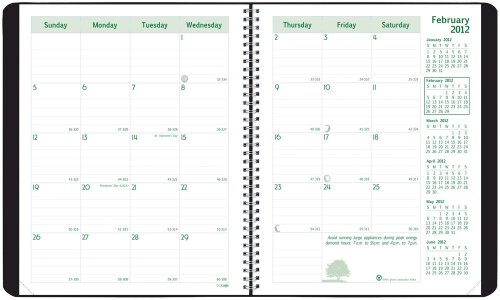 Brownline 2012 EcoLogix Monthly Planner, 14 Months (Dec-Jan), Twin-Wire, Black, 11 x 8.5-Inches (CB435W.BLK)