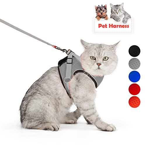 Harness Mesh Grey Reflective - SENYE PET Cat Harness Escape Proof Small Cat and Dog Soft Mesh Vest Harnesses Adjustable Pet Harness with Leash Clip & Reflective Strap Cat Walking Jacket Comfort Fit for Kitten Puppy (XL, Grey)