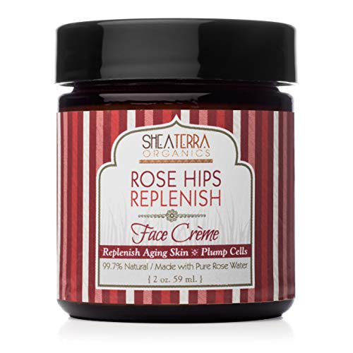 Shea Terra Organics Rose Hips Replenish Face Crème | Daily Moisturizer Spa Treatment | All Skin Types – 2 oz