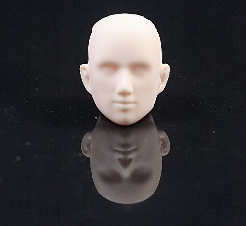 CHENGYIDA 1/6 Scale Obitsu 27cm Male Head 27HD-F02W White...