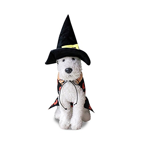 Bigface Up Pet Dog Halloween Wizard Cloak Costume with Hat Dog Party Clothes (Small)