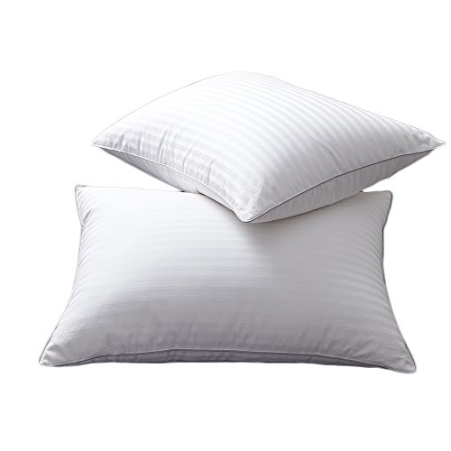Set of 2 White Goose Down and Feather Bed Pillows - Triple Chambers Design, 1000TC 100% Egyptian Cotton Fabric Standard/Queen Size, Soft Pillow (Egyptian Cotton Pillow)