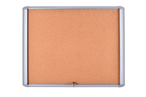 MasterVision Enclosed Bulletin Board Outdoor Water resistant, Cork Surface, 30'' x 26.5'' with Aluminum Frame by MasterVision