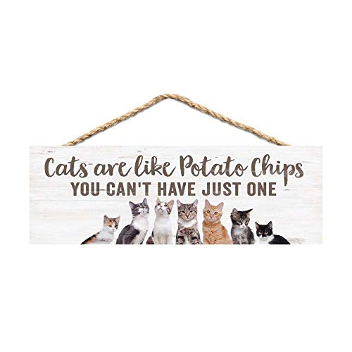 P. Graham Dunn Cats are Like Potato Chips Whitewashed 10 x 4 Pine Wood Decorative String Sign