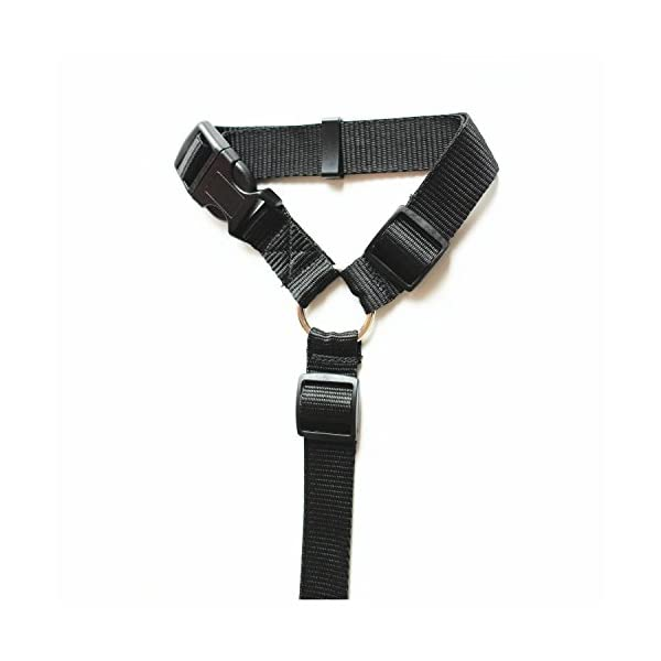 Dog Car Seat Belt Restraint Harness Safety Tether Accessories for Pet Dog Cat Travel (Black) Click on image for further info. 3
