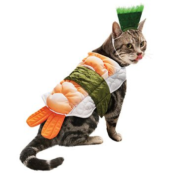 Amazon.com : Petco Halloween Sushi Cat Costume, One Size Fits Most ...