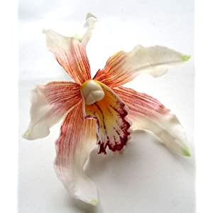 "(4) White Hawaiian Cymbidium Cattleya Silk Flower Heads - 4.5"" - Artificial Flowers Heads Fabric Floral Supplies Wholesale Lot for Wedding Flowers Accessories Make Bridal Hair Clips Headbands Dress 22"