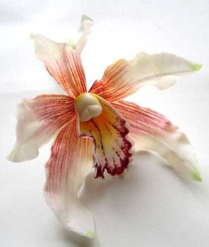 Amazon 4 white hawaiian cymbidium cattleya silk flower heads 4 white hawaiian cymbidium cattleya silk flower heads 45quot artificial flowers mightylinksfo