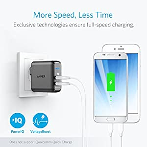 Anker Elite USB Charger, Dual Port 24W Wall Charger, PowerPort 2 with PowerIQ and Foldable Plug, for iPhone Xs/XS Max/XR/X/8/7/6/Plus, iPad Pro/Air 2/Mini 3/Mini 4, Samsung S4/S5, and More