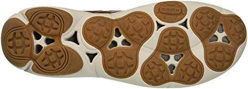 sin Geox U Nebula Hombre Cordones Zapatillas B Marrón C6003 para Browncotto rIaRqI