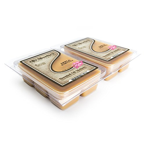 Apple Harvest Wax Melts 2 Pack - Highly Scented - Similar to Yankee Candle Tarts or Scentsy Bars - Bakery Warmer Wax Cubes Collection