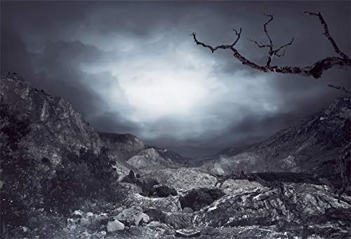 AOFOTO 10x7ft Halloween Scenery Nature Photography Background Misty and Gloomy Rock Tree Cloud Scary Dark Backdrop Party Deoration Photo Shoot Studio Props Adult Artistic Portrait Vinyl]()
