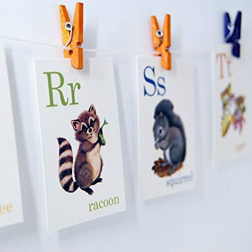 Animal ABC Alphabet Retro Vintage Style 4x6 or 5x7 Cards, raccoon, bee, squirrel, tiger, bear
