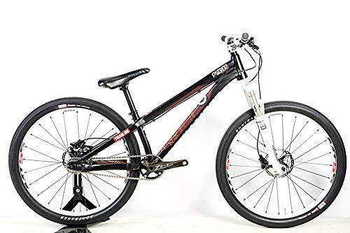 SPECIALIZED(スペシャライズド) P3(P3) マウンテンバイク 2013年 Lサイズ B07HK57W7B