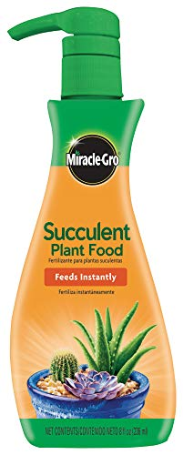 MiracleGro Succulent Plant Food 8 oz For Succulents including Cacti Jade And Aloe 1 Pack