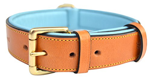 Soft Touch Collars Padded Leather Dog Collar, Size Large, Tan and Teal, Real Genuine Leather, 24