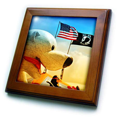 3dRose Susans Zoo Crew Scenery - Flag fair Polar Bear Ride Florida Scenery - 8x8 Framed Tile (ft_294132_1)