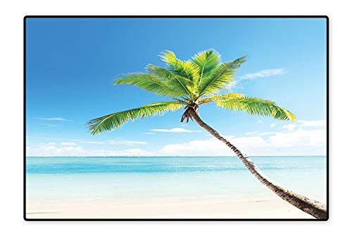 Water-Repellent Rugs A Palm Tree on Caribbean Sandy Beach Clear Sky Horizon Hot Sunny Day Panorama Blue Green Beige Anti Bacterial 6'6