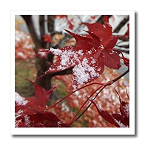ht_185395_1 Renderly Yours Autumn And Halloween - Red Maple Leaves With Snow - Iron on Heat Transfers - 8x8 Iron on Heat Transfer for White Material
