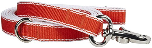 Waggo Stripe Hype Leash - Cherry - Small - 5 ft x 5/8 inch