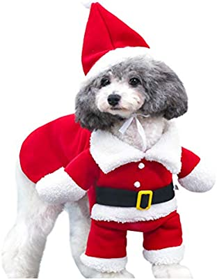 S Yu-Xiang Dog Christmas Pet Standing Transformed Dress Santa Claus Costume Pet Clothes Christmas Halloween Autumn and Winter Clothes