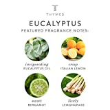 Thymes - Eucalyptus Aromatic Oil Reed Diffuser
