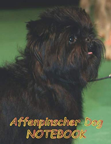 """Affenpinscher Dog NOTEBOOK: Notebooks and Journals 110 pages (8.5""""x11"""")"""