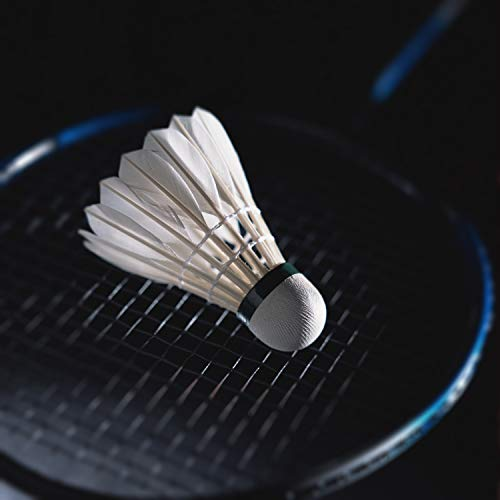 KEVENZ 12-Pack Advanced Goose Feather Badminton Shuttlecocks,Nylon Feather Shuttlecocks High Speed Badminton Birdies Balls with Great Stability and Durability (White) by KEVENZ (Image #4)