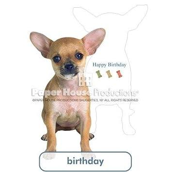 Amazon Paperhouse Productions Tan Chihuahua Birthday Card