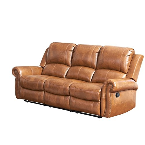 Abbyson Winston Leather Reclining Sofa in Brown -