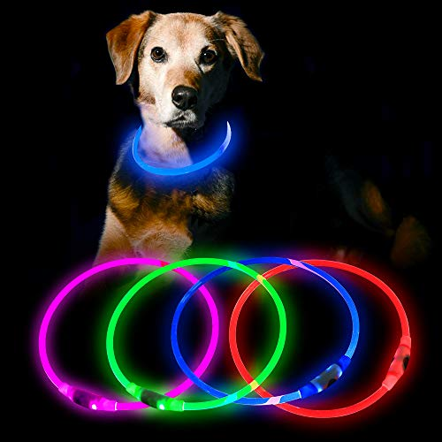 HiGuard LED Dog Collar USB Rechargeable Glowing Pet Collars Lighted Up Safety Necklace Glow in The Dark for You & Your Dogs