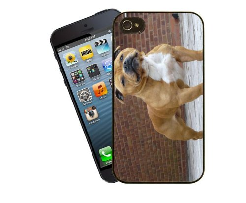 Eclipse Gift Ideas Staffordshire Bull Terrier Phone Case, Design 1 - For Apple iPhone 4 / 4s - Cover